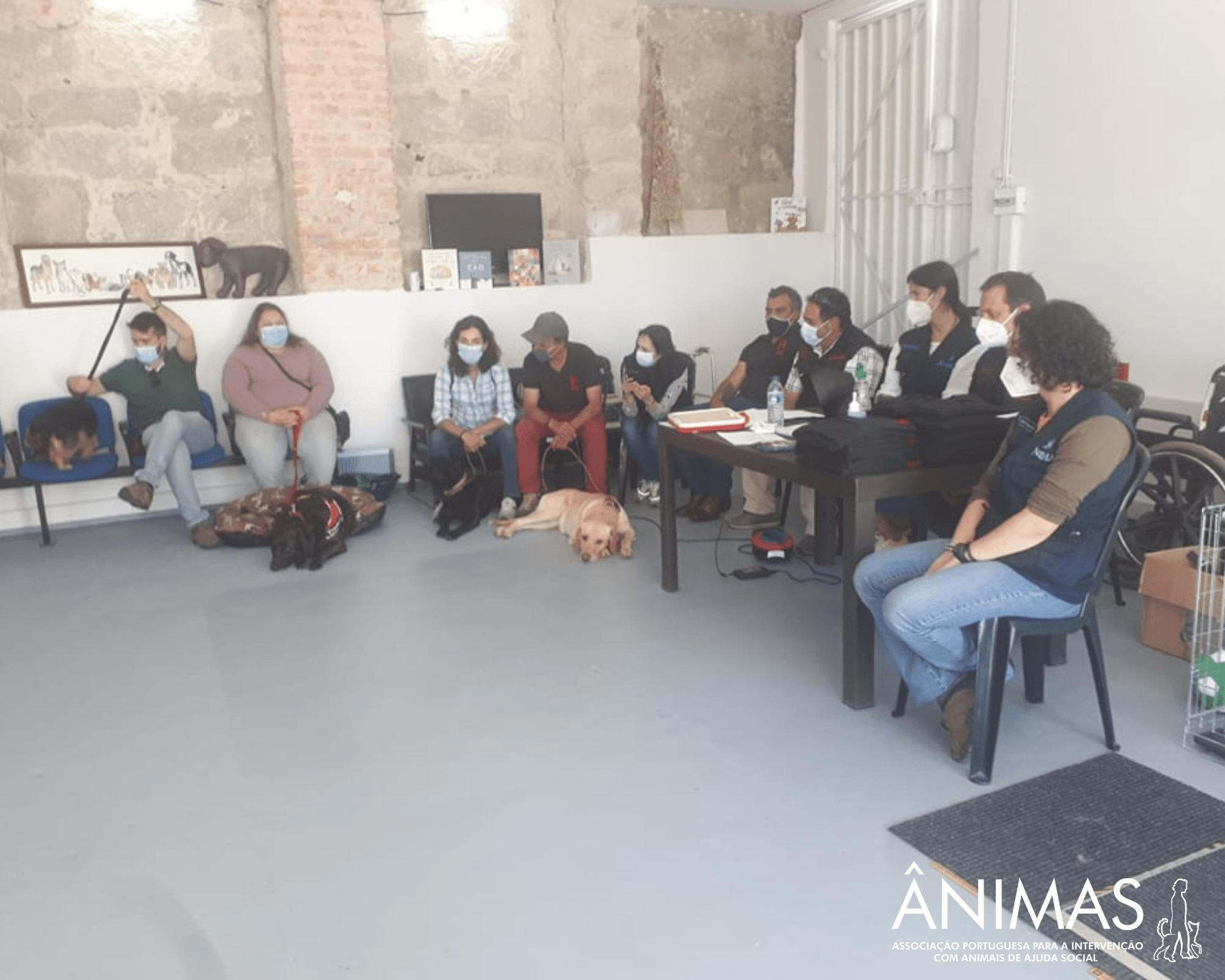 Intervenções Assistidas por Animais