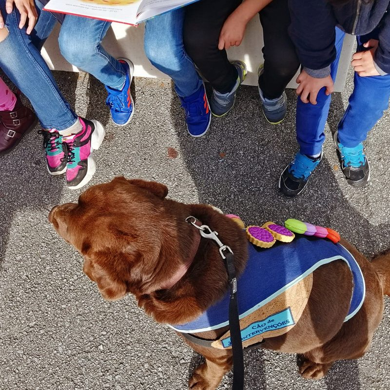 Intervenções Assistidas por Animais - Ânimas